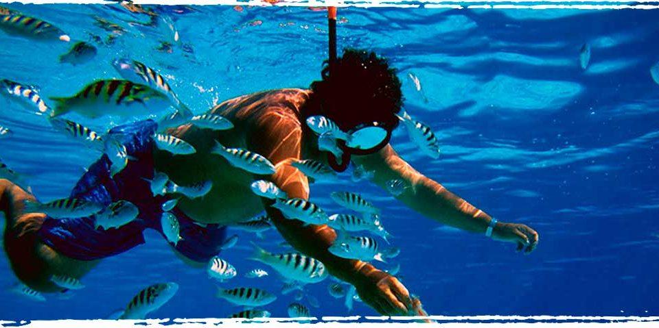 Top 10 Florida Snorkeling Spots - Xperience Florida Marine